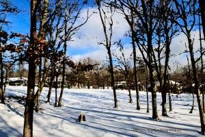 SnowGolfCoursePainting14010601